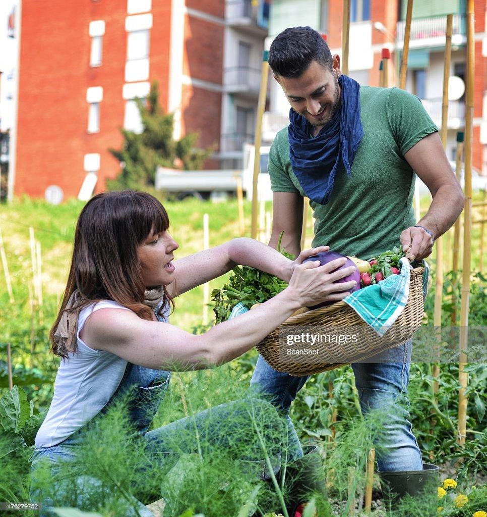 People Working in Vegetable Garden