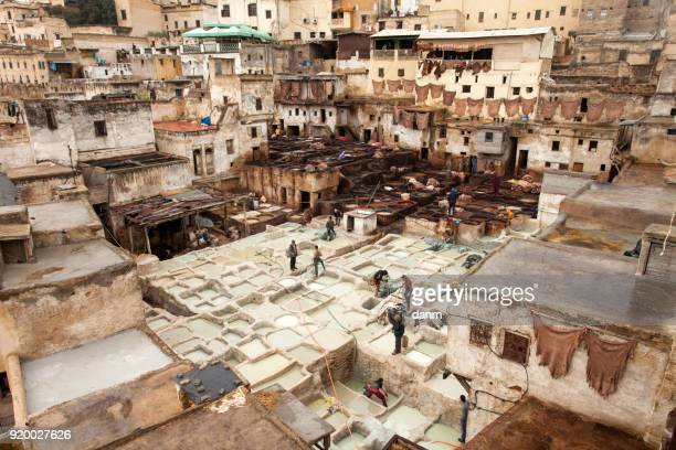 people working in the famous tannery complex of fes in foul smelling conditions. - animal body part stock pictures, royalty-free photos & images