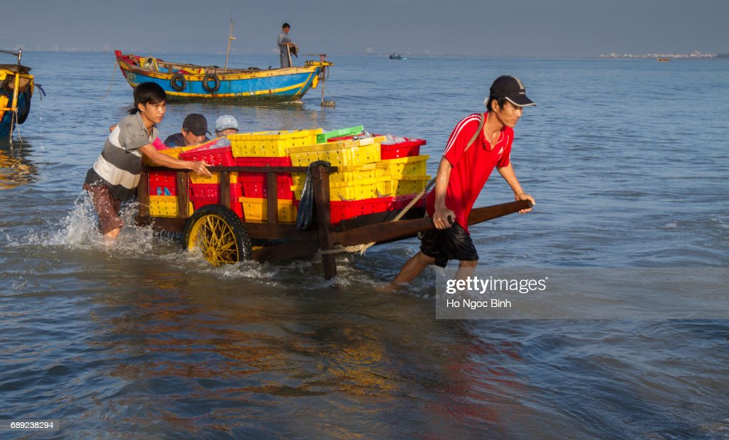 People's daily life at fishing village Long Hai, they collecting fresh fishes from boat and open up a market in the early morning : Stock Photo