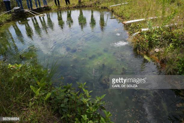 People's shadows are cast over a water spring which is one of the headwaters of the Pantanal wetlands in Mato Grosso state Brazil on March 5 2018 The...