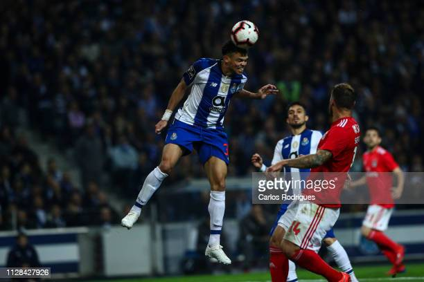 Pepe of FC Porto during the Liga NOS match between FC Porto and SL Benfica at Estadio do Dragao on March 2 2019 in Porto Portugal