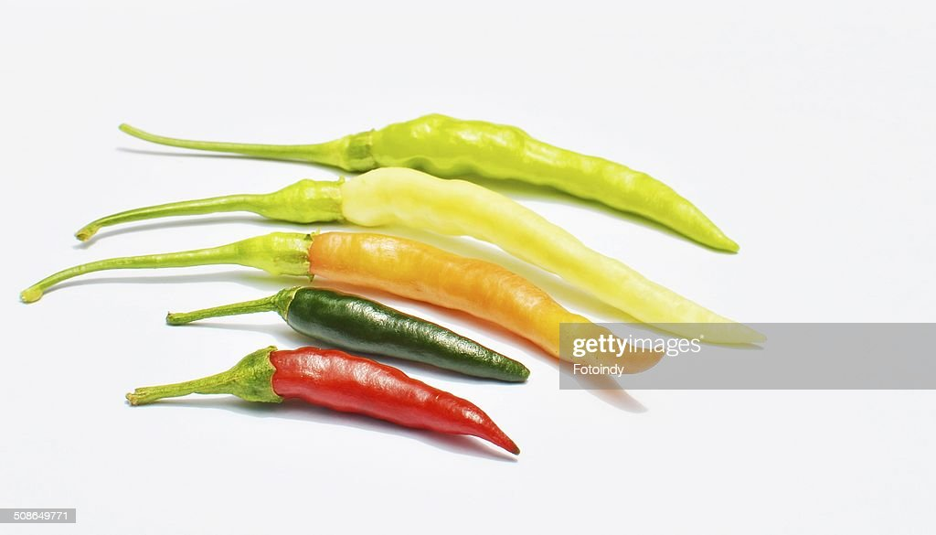 pepper,chili vegetable : Stock Photo