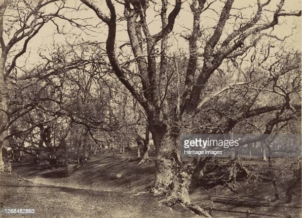 Pepperharrow Park, Surrey, 1852-54. Artist Benjamin Brecknell Turner.