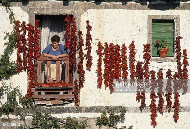 Peppers hung to dry along the facade of a house in Biscay Basque Country Spain