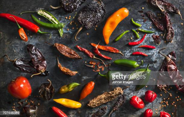 Peppers on grey background