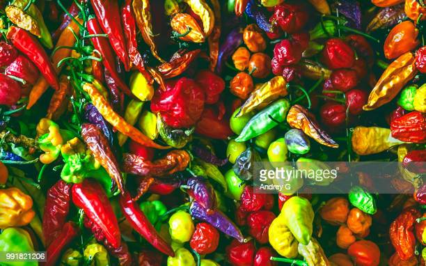 peppers - jalapeno pepper stock pictures, royalty-free photos & images