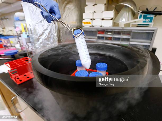 Peptide's are frozen with liquid nitrogen to store them until they are used to see if they are a potential new drug candidates for testing against a...