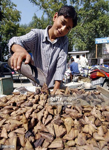 12 year old Kashmiri boy Altaf sells water chestnuts from a stall on the roadside in Srinagar 02 October 2005 In South Asia children make up over 40...