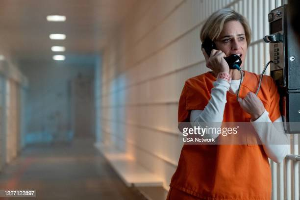 """Perception is Reality"""" Episode 208 -- Pictured: Amanda Peet as Betty Broderick --"""