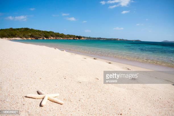 Perfect beach in Sardinia