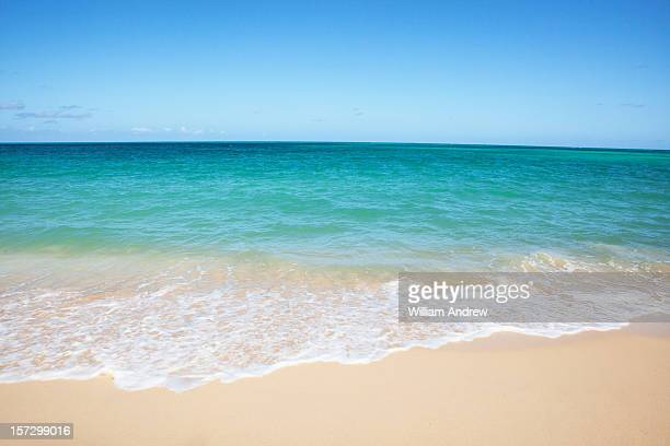 perfect beach - water's edge stock pictures, royalty-free photos & images