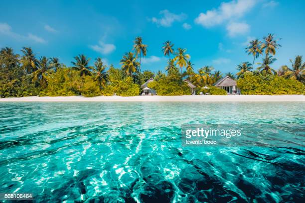 perfect beach view. summer holiday and vacation design. inspirational tropical beach, palm trees and white sand. tranquil scenery, relaxing beach, tropical landscape design. moody landscape - litoral fotografías e imágenes de stock