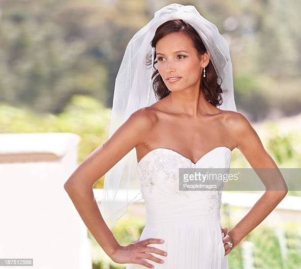 perfect bridal pose - veil stock photos and pictures