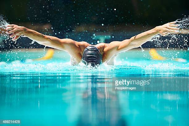 perfect butterfly stroke! - endurance stock photos and pictures