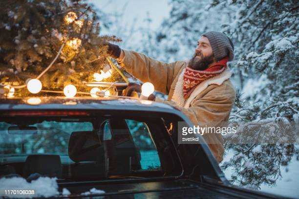 perfect christmas tree is arrived - car decoration stock pictures, royalty-free photos & images