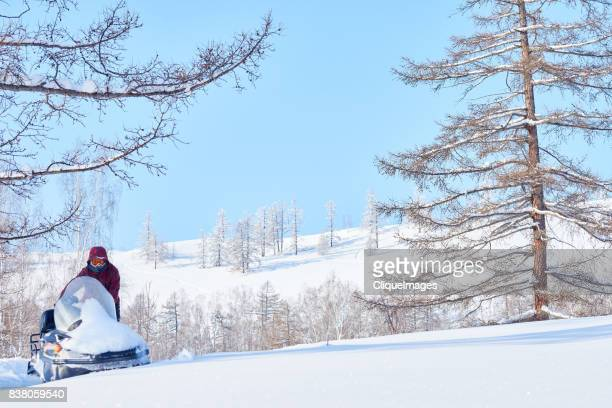 perfect day for snowmobiling - cliqueimages stock pictures, royalty-free photos & images