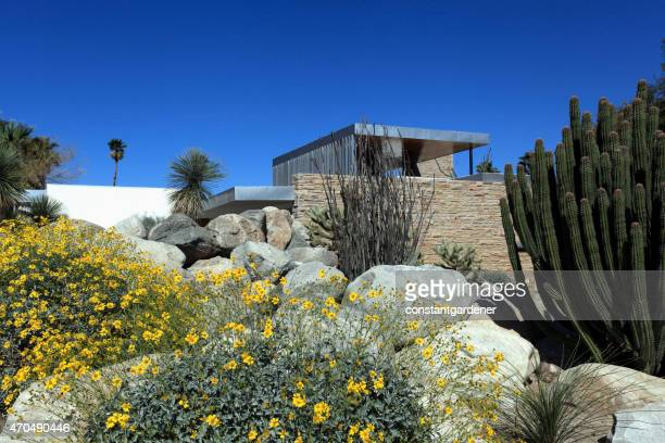 Perfect Desert Modern Landscaping And Home