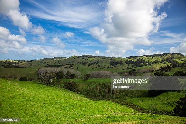 Perfect Fluffy Clouds Over Rolling New Zealand Farmland
