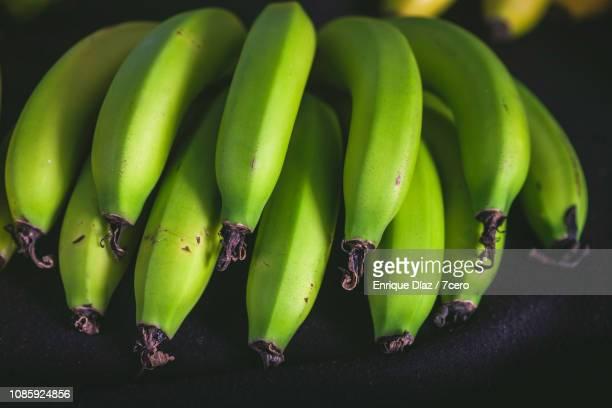Perfect Green Banana Bunch