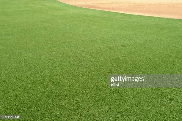 Perfect green grass on playing field