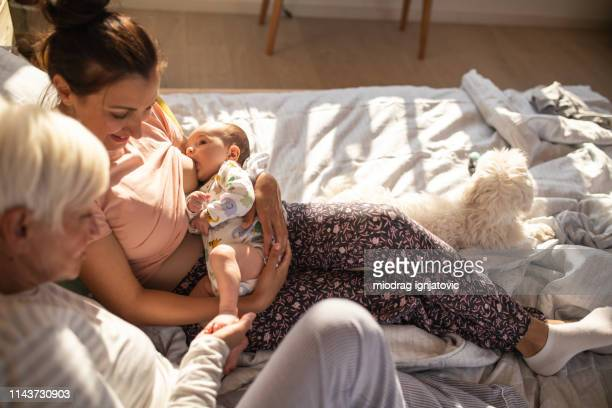 perfect love - woman breastfeeding animals stock photos and pictures