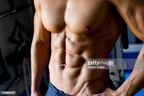 Perfetto maschio torso