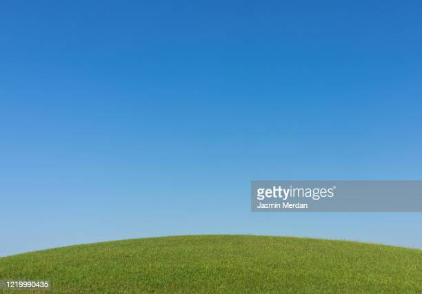 perfect meadow under blue sky - gras stock pictures, royalty-free photos & images