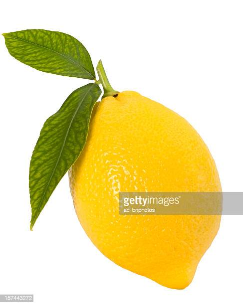 Perfect shape lemon with two leaves