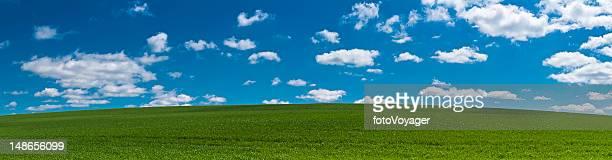 夏の風景を背景にグリーンフィールドヒルブルーの空のパノラマに広がる眺め
