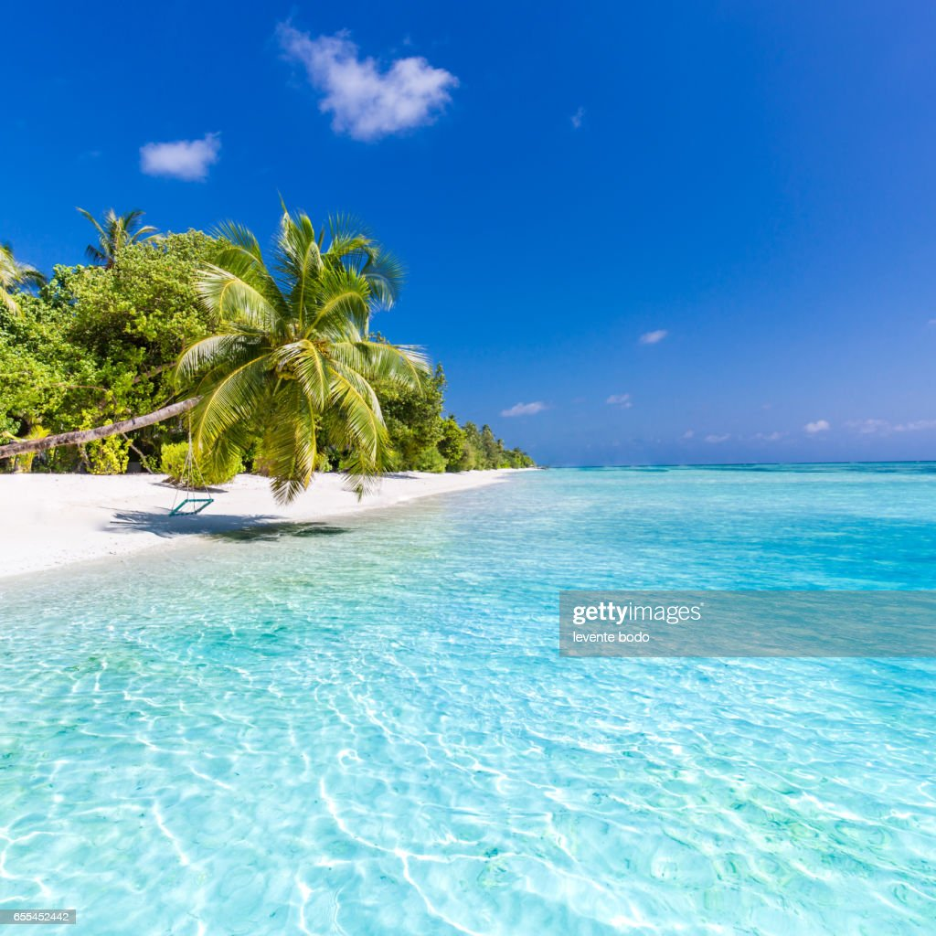 Beach Island: Perfect Tropical Island Maldives Paradise Beach Beautiful