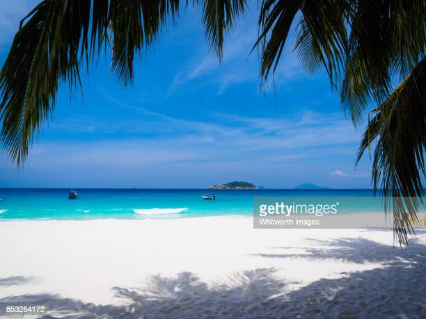 perfect white sand tropical beach framed with palm fronds, redang island, malaysia - terengganu stock pictures, royalty-free photos & images