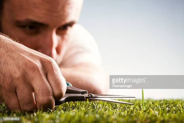 perfectionist - garden gardening perfection grass scissors humor - perfection stock pictures, royalty-free photos & images