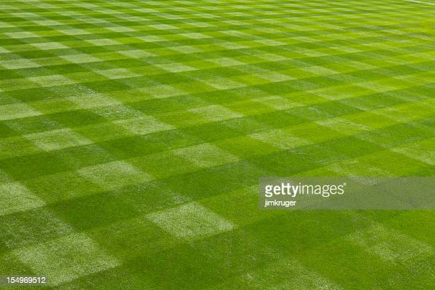 perfectly mown grass at the ball field. - track and field stadium stock pictures, royalty-free photos & images