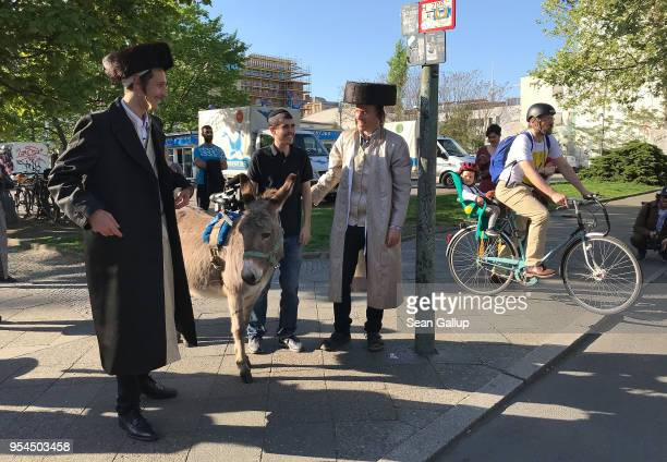 Performance artists Veli Amos are dressed as UltraOrthodox Jews as they follow a guide and a donkey while shooting a film in immigrantheavy Kreuzberg...