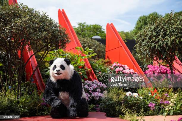 A performer in a panda costume performs in the Silk Road Garden at the Chelsea Flower Show on May 22 2017 in London England The prestigious Chelsea...