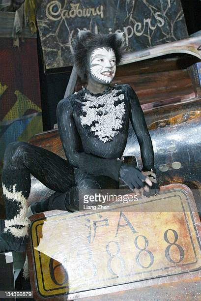 """Performers onstage during Musical """"Cats"""" Performance - March 27, 2003 in Shanghai, Shanghai, China."""