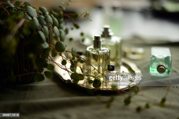 perfume bottles and a green plant - perfume stock pictures, royalty-free photos & images