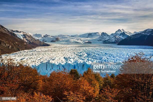 Perito Moreno Glaciar with Autumn Colors, El Calafate, Argentina