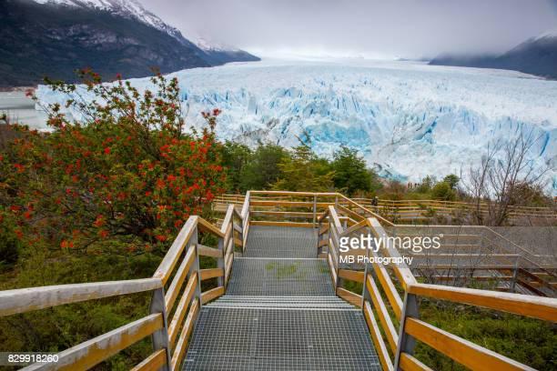 Perito Moreno Glacier, Patagonia.