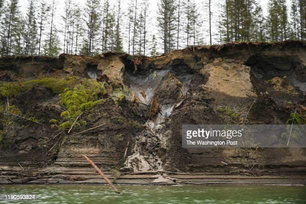 Permafrost, seen at the top of the cliff, melts into the Kolyma River outside of Zyryanka, Russia on July 4, 2019. The river is one of the principal...