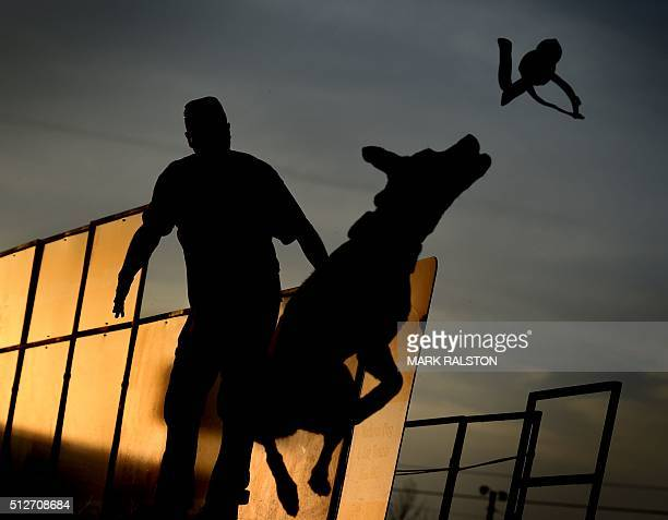 Perry Collier watches as his dog 'Smoke' leaps into the water to record the distance of his jump during the Dock Dogs West Coast Challenge in...