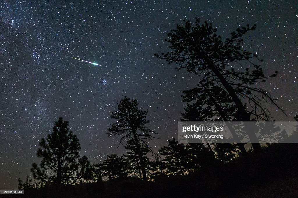 2016 Perseid Meteor Fireball Streaks Above Pine Trees : Stock Photo