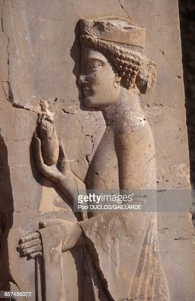 Persepolis in southern Iran ancient city of the Persian Empire founded by King Darius the Great here a eunuch in June 1993 in Iran