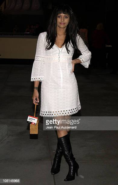 Persia White during 2003 TCA UPN Summer Party at Renissance Hotel in Hollywood California United States