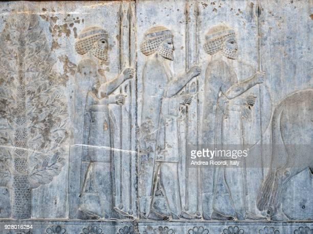 Persian warriors bas relief, Persepolis, Iran