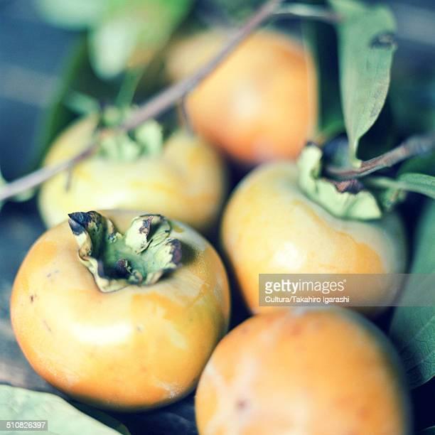 persimmon fruit - 東北地方 ストックフォトと画像