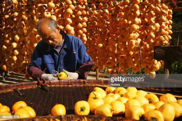 persimmon in autumn - parto natural imagens e fotografias de stock