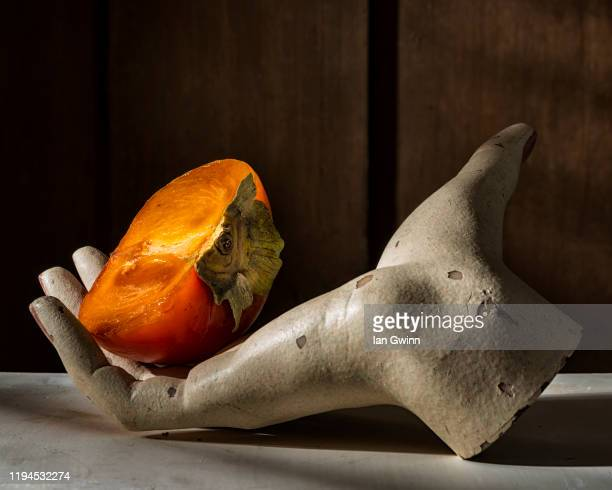 persimmon in mannequin hand - ian gwinn stock pictures, royalty-free photos & images