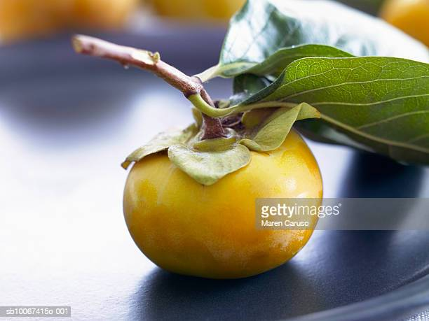 Persimmon on vine with leaves on plate
