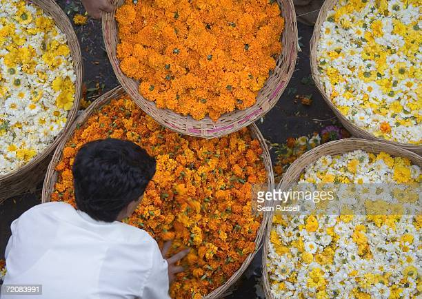 Person bending over basket full of flowers at market, Mumbai, India